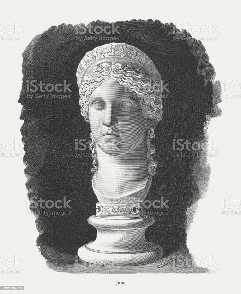 Juno Ludovisi, ancient Roman marble head (1st century AD) vector art illustration