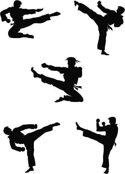 karate fighters silhouettes - martial arts stock illustrations