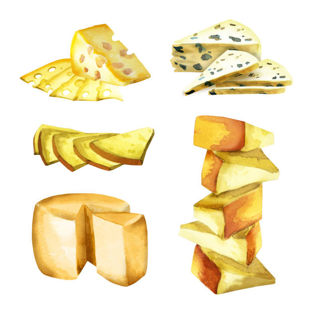 Kinds of cheese set. Watercolor Kinds of cheese set. Watercolor mozzarella stock illustrations