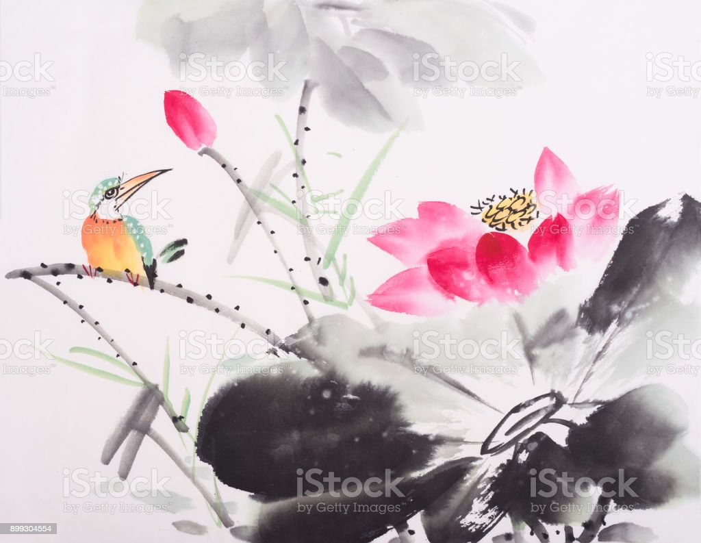 Kingfisher And Lotus Flower Watercolor Painting Stock Vector Art