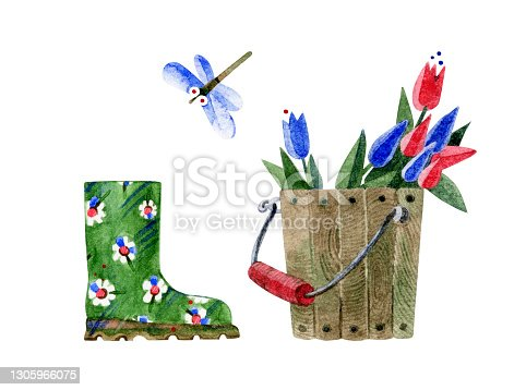 istock Kit of garden items. Wooden bucket with red and blue tulips, dragonfly and green rubber boots with floral pattern. Hand-drawn watercolor illustrations isolated on a white background. For print. 1305966075