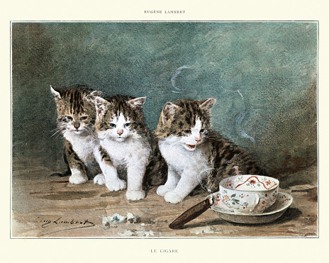Kittens curious about a lit cigar, 19th Century