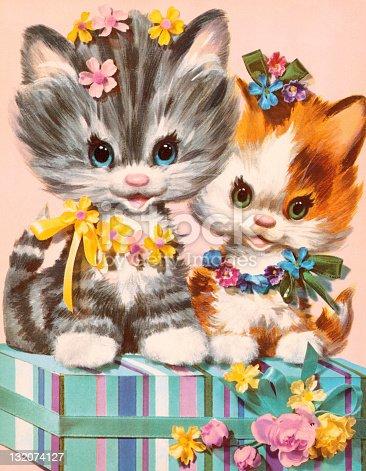Kittens on Gift