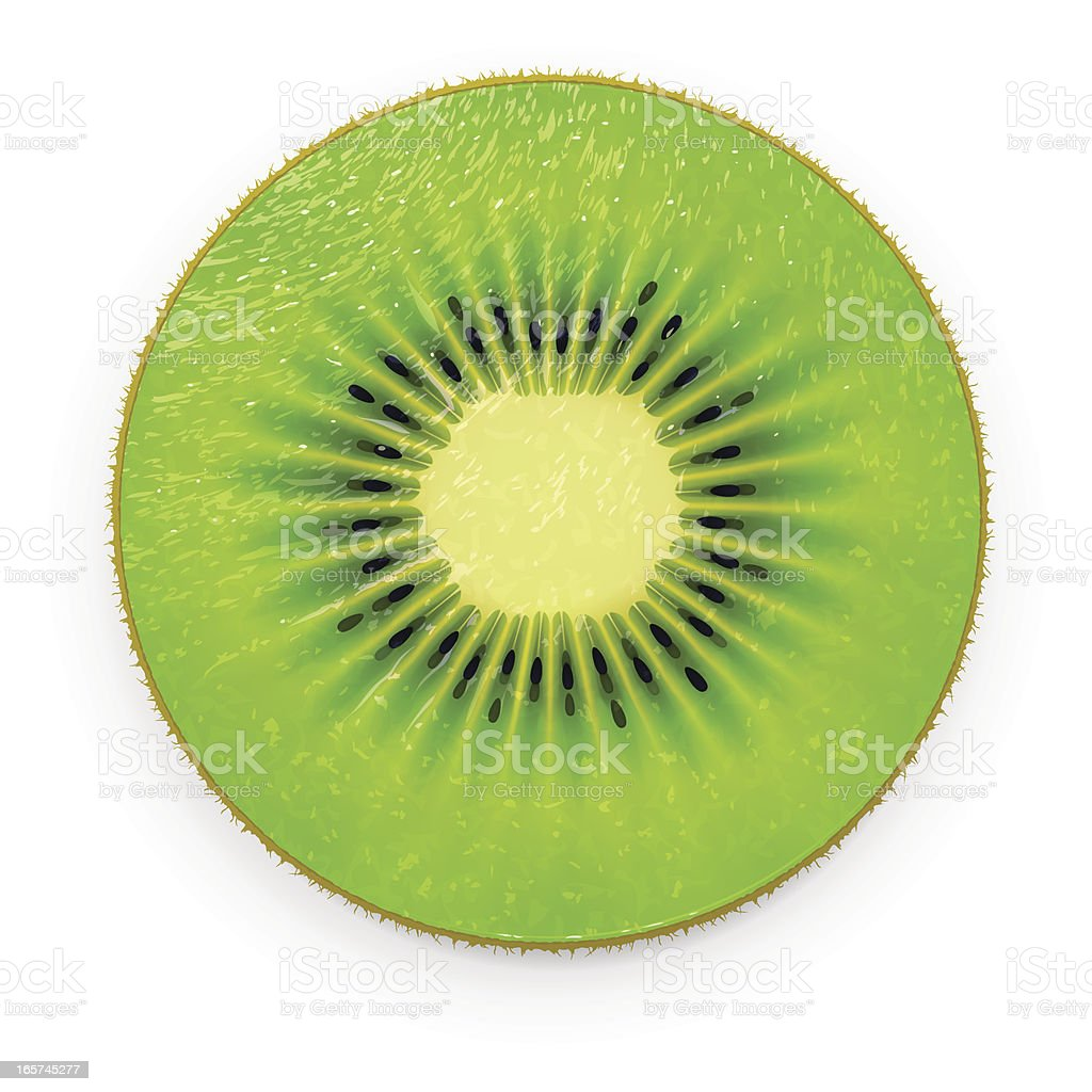 Kiwi slice royalty-free kiwi slice stock vector art & more images of circle