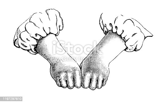 Illustration of a Knuckle