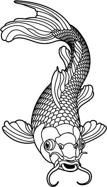 Ilustración de Carpa Koi Pescado Blanco Y Negro y más banco de ...