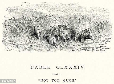 Vintage engraving from La Fontaine's Fables, Illustraed by Gustave Dore. Not to Much. A lost flock of sheep being chased by wolves
