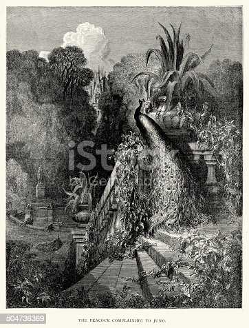 istock La Fontaine's Fables - Peacock complaining to Juno 504736369
