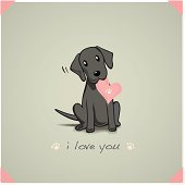 Unconditional love from a black lab pup.