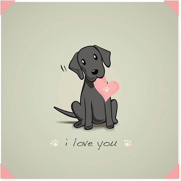bildbanksillustrationer, clip art samt tecknat material och ikoner med labrador puppy - valp