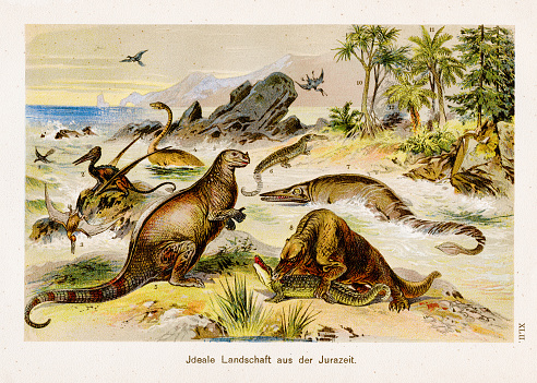 Landscape from the jurassic period Chromolithography 1899