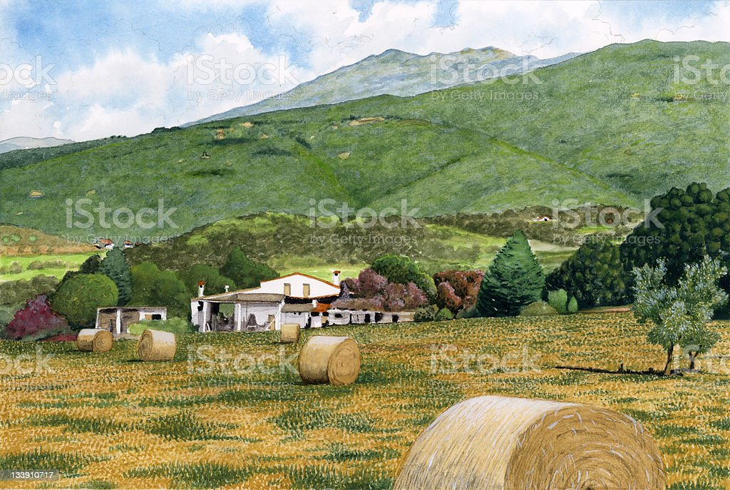 Landscape with farm and wheat fields vector art illustration