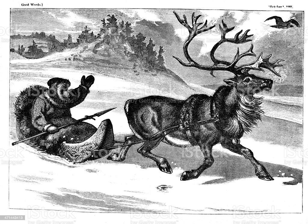 Laplander in sleigh pulled by reindeer from 1867 journal vector art illustration