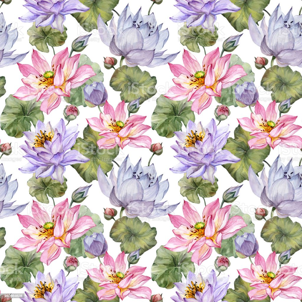 Large pink and purple lotus flowers with leaves on white background large pink and purple lotus flowers with leaves on white background beautiful floral seamless pattern izmirmasajfo Gallery