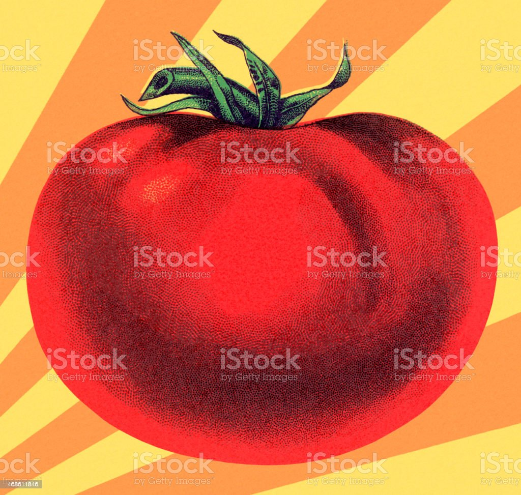 Large Tomato vector art illustration