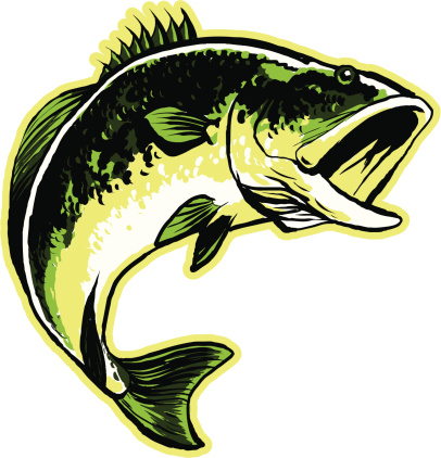 Largemouth Bass Stock Illustration - Download Image Now