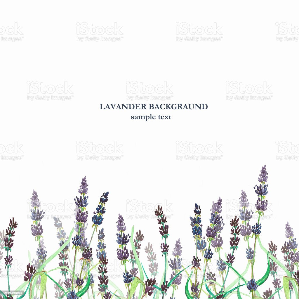 Lavander watercolor background royalty-free lavander watercolor background stock vector art & more images of art product