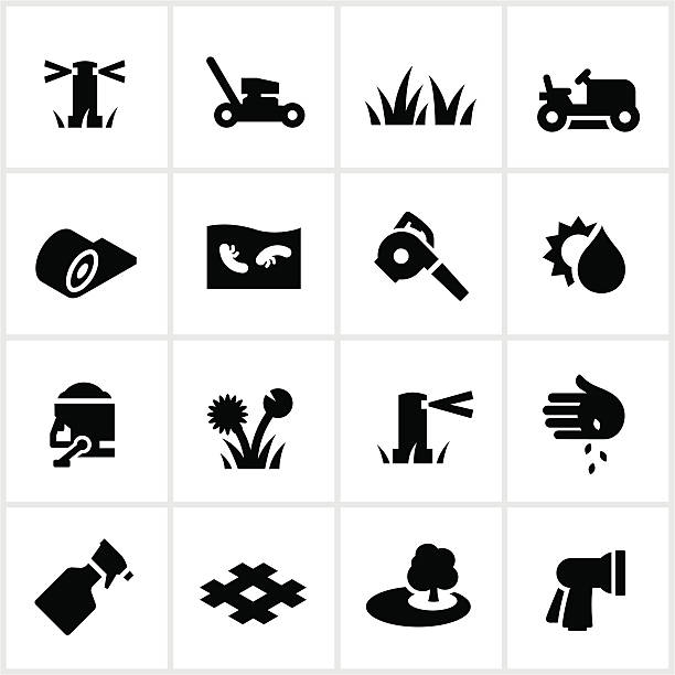 illustrations, cliparts, dessins animés et icônes de pelouse icônes de soins - plante sauvage