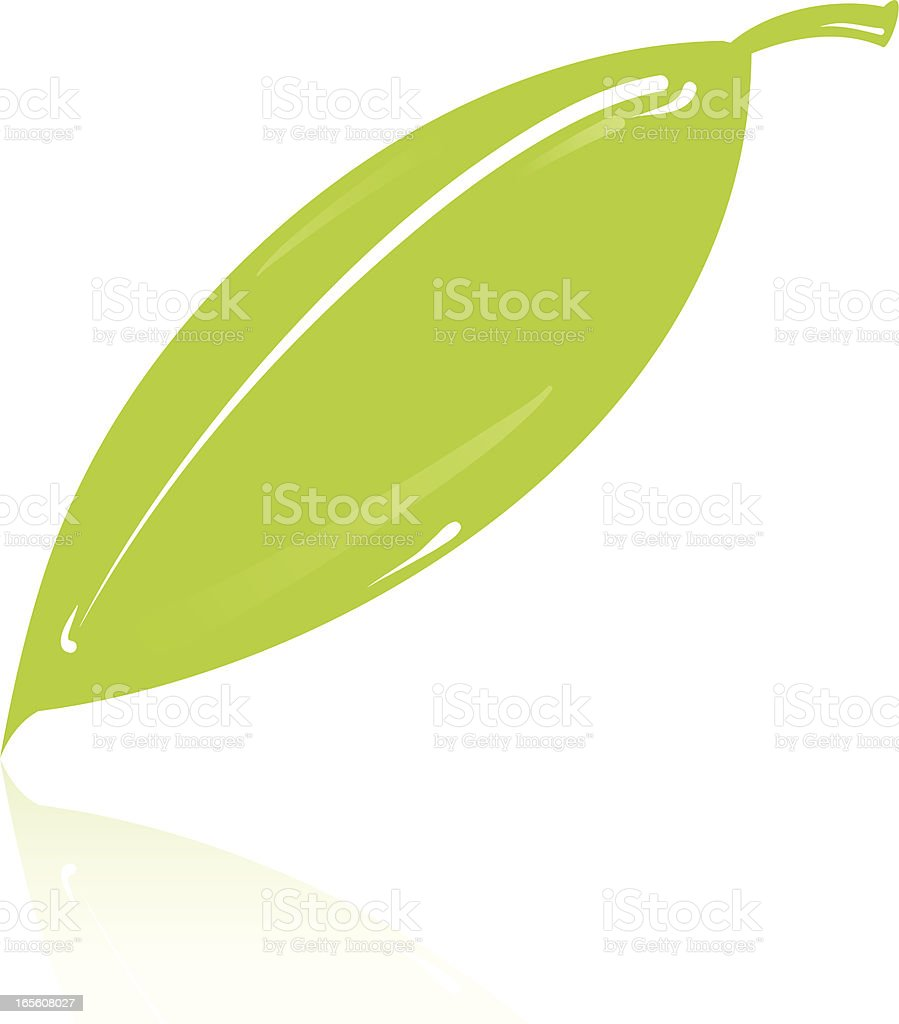 Leaf royalty-free leaf stock vector art & more images of environment