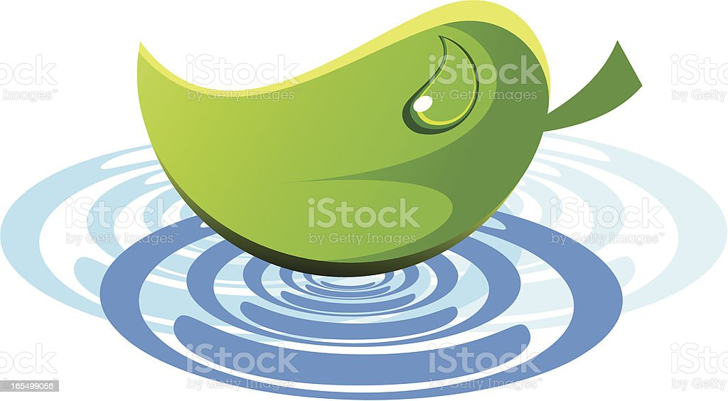 Leaf on water royalty-free stock vector art