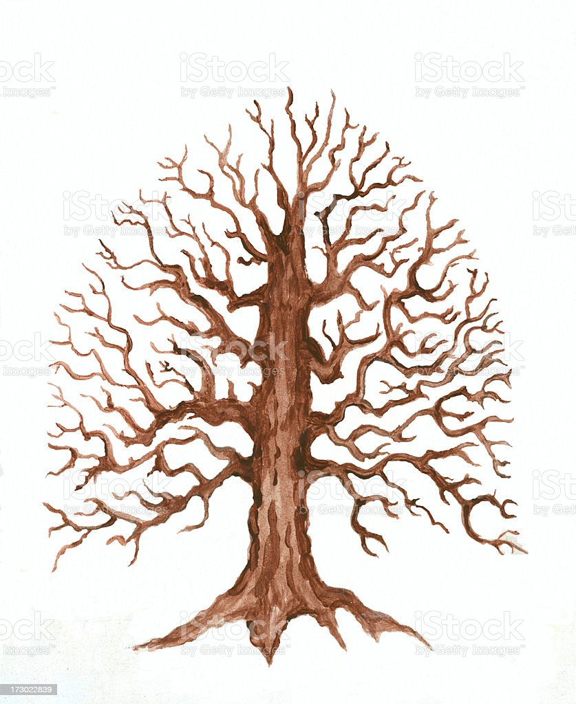 Leafless Tree royalty-free stock vector art
