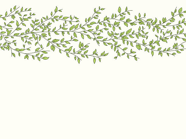 leafy background - vine stock illustrations, clip art, cartoons, & icons
