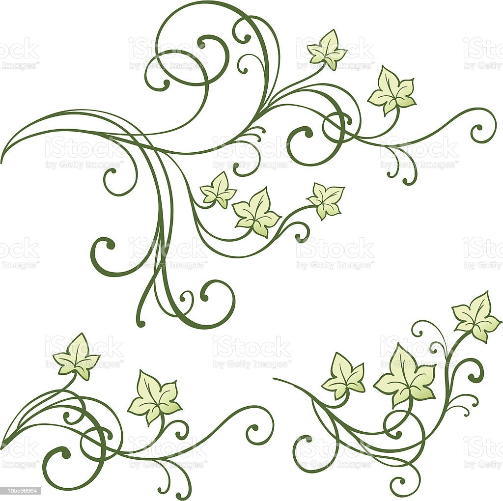 Leaves royalty-free leaves stock vector art & more images of angle