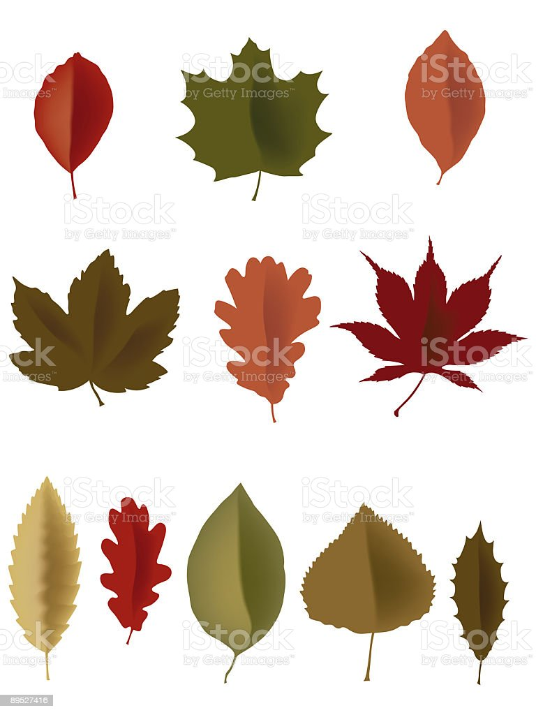 leaves royalty-free leaves stock vector art & more images of at the edge of