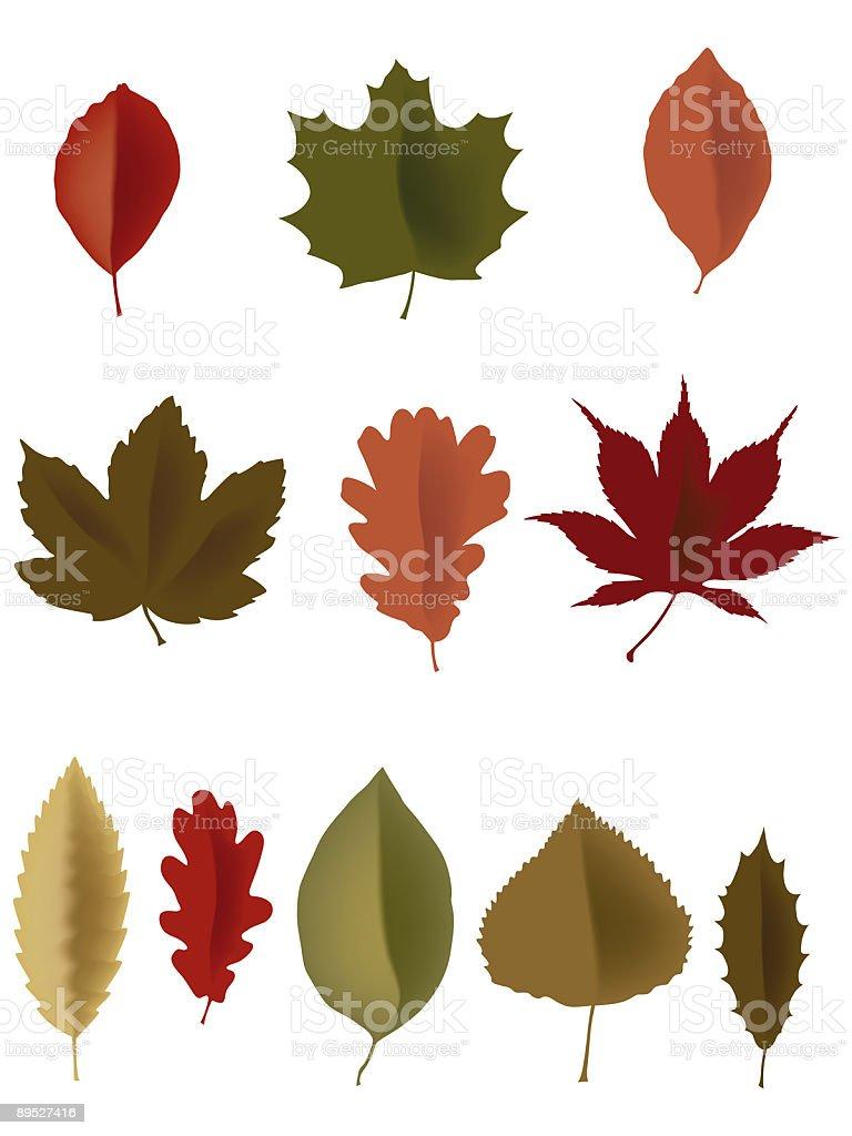 Blätter Lizenzfreies blätter stock vektor art und mehr bilder von am rand