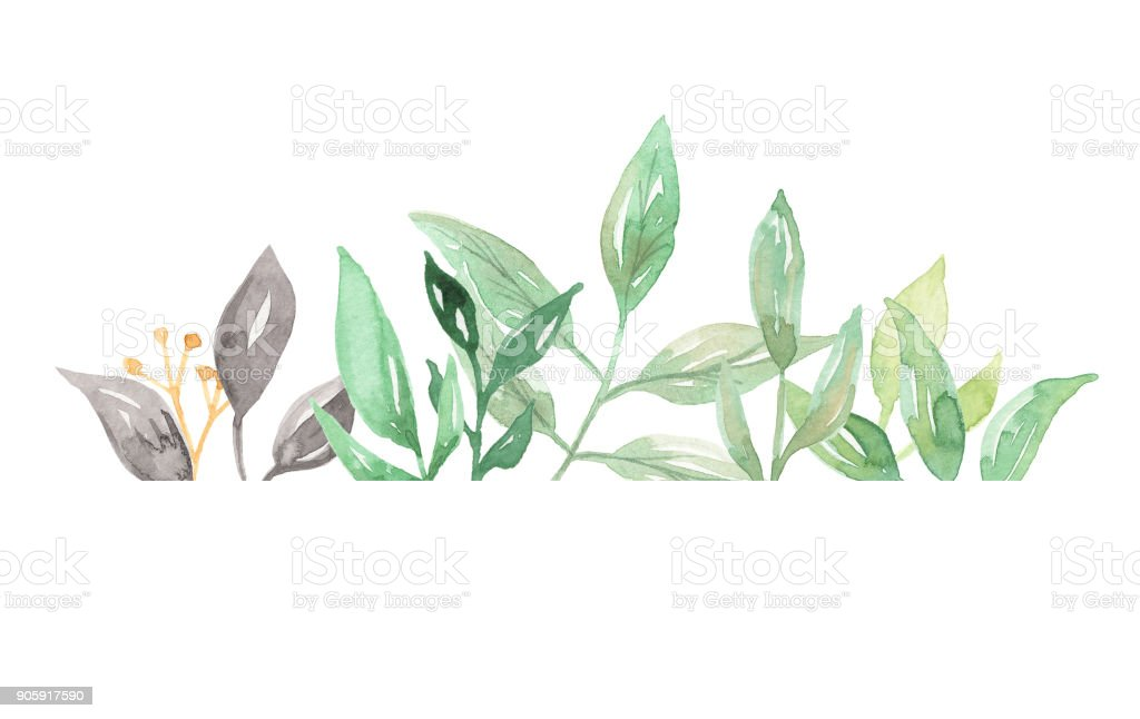 Leaves Watercolor Leaf Frames Pretty Border Greenery