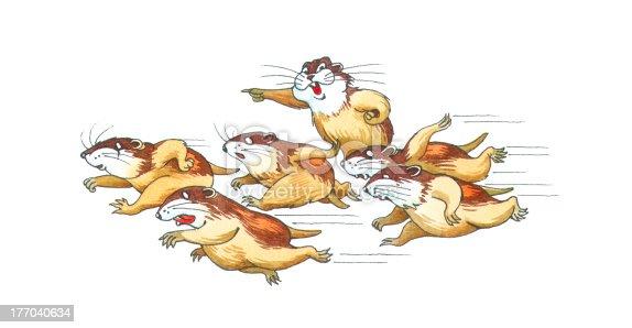 istock lemmings 177040634