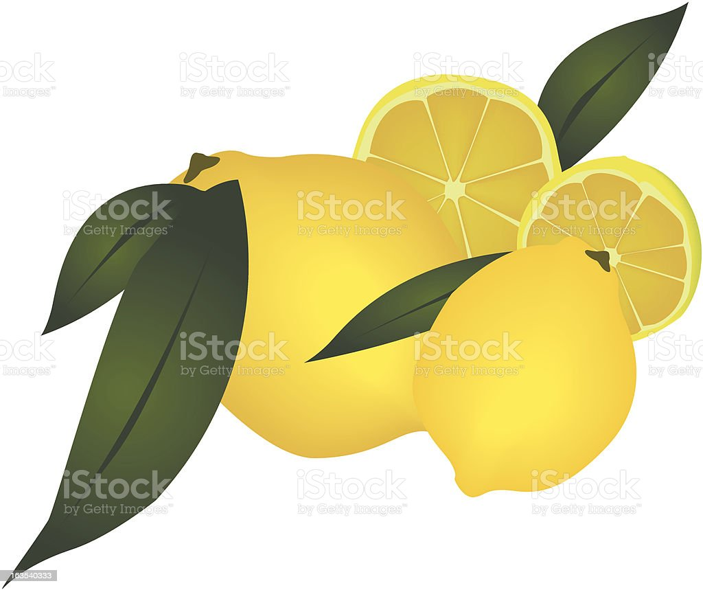 Lemon royalty-free stock vector art