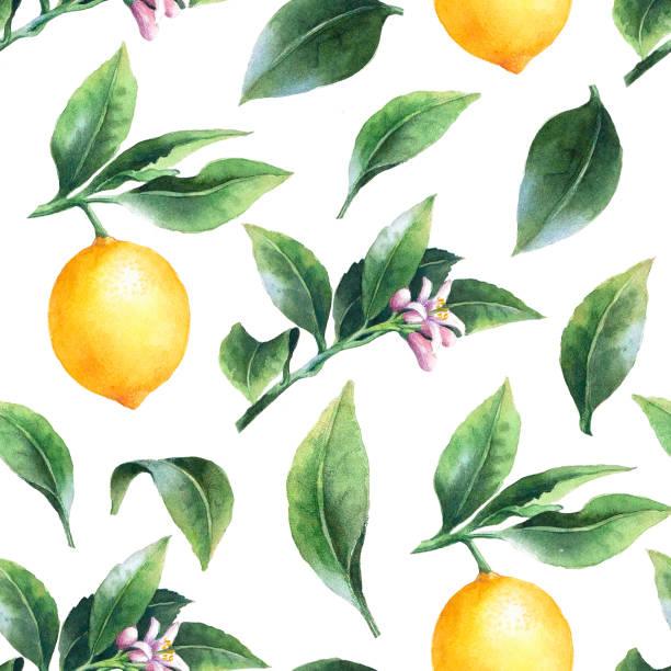 レモン支店のシームレスな背景の。 - レモン点のイラスト素材/クリップアート素材/マンガ素材/アイコン素材