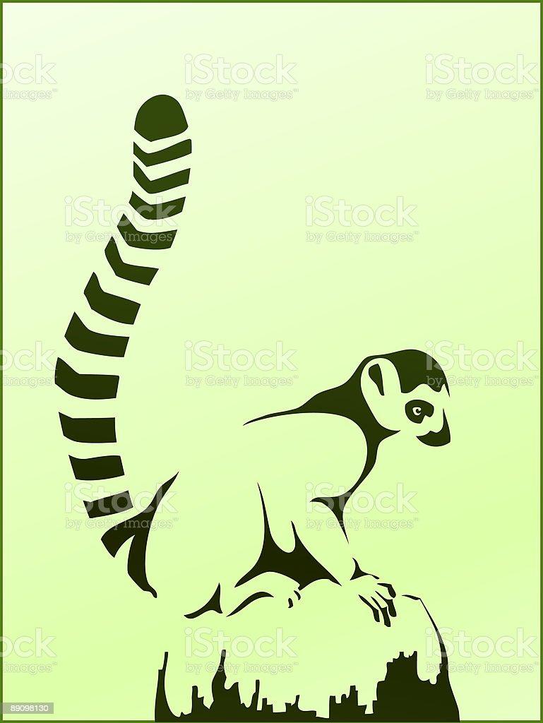 Lemur catta royalty-free stock vector art