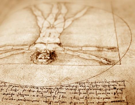 Leonardo Da Vinci anatomy art close-up
