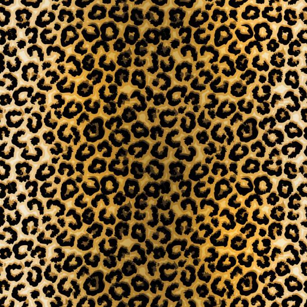 ilustraciones, imágenes clip art, dibujos animados e iconos de stock de ilustración de patrón de leopardo - textura de leopardo