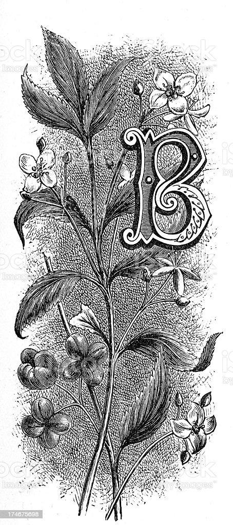 Letter B - Flower Font royalty-free stock vector art
