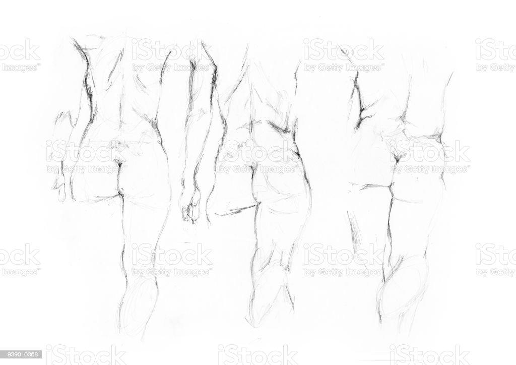 Aktzeichnen Studie Frauen Nackt Wandern Stock Vektor Art und mehr ...