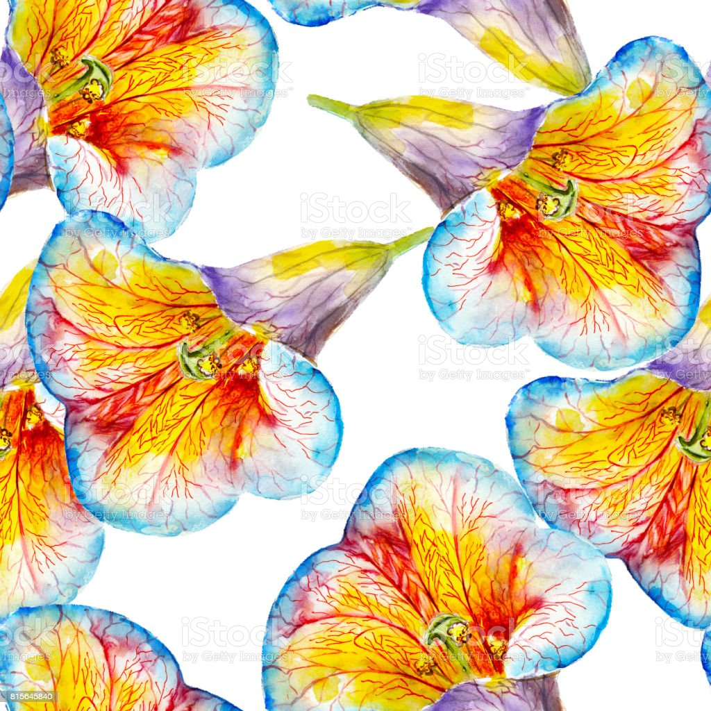 Lily flower watercolor seamless pattern bright tropical flowers lily flower watercolor seamless pattern bright tropical flowers isolated on white background hand izmirmasajfo Images
