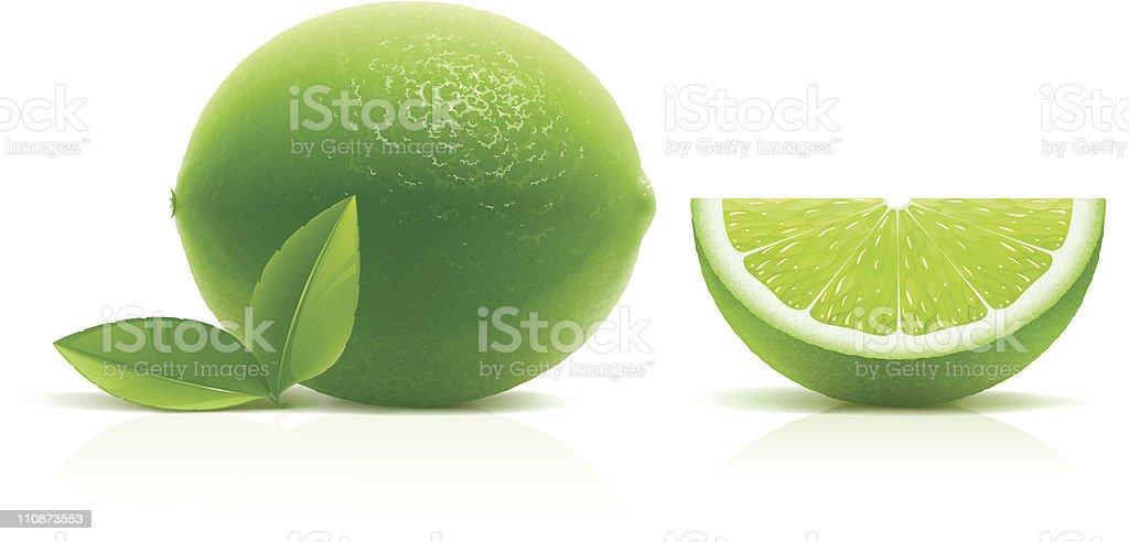 Lime vector art illustration