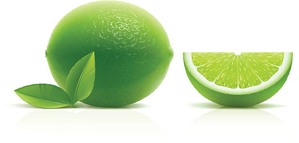 Lime vector art illustration