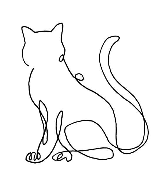 ilustrações de stock, clip art, desenhos animados e ícones de line drawing of cat - um animal