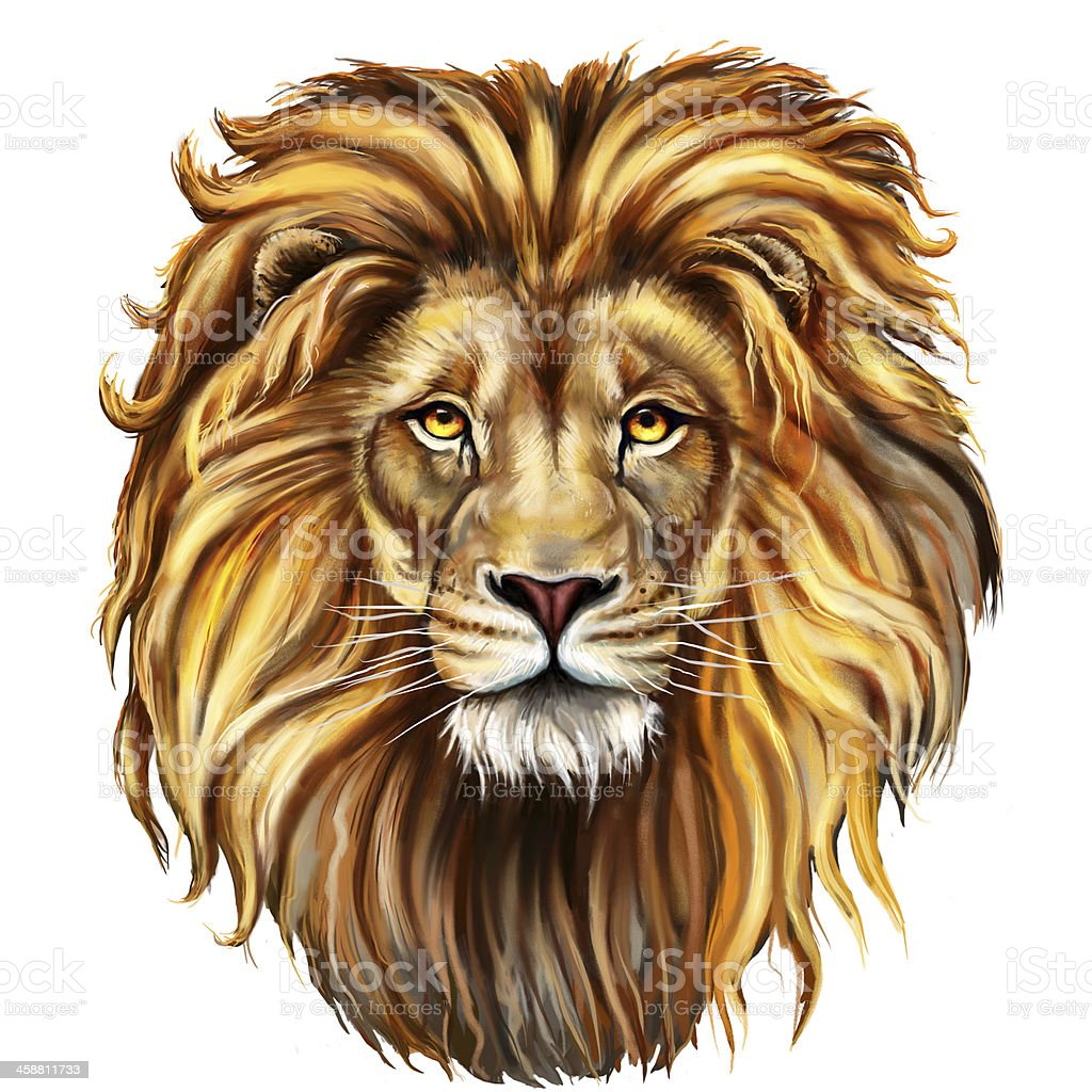 lion head in front vector art illustration