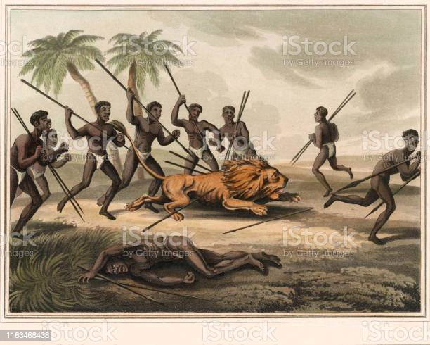 Ilustración De Caza De Leones En Africa Y Más Vectores Libres De Derechos De Africano Nativo Istock