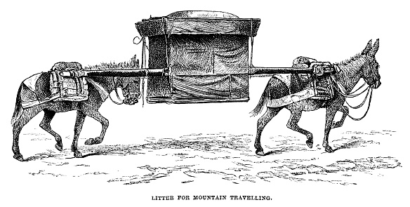 """A litter carried by donkeys, used for travelling in mountainous areas of Mongolia. From """"Sunday at Home - A Family Magazine for Sabbath reading, 1883"""", published by the Religious Tract Society, London."""