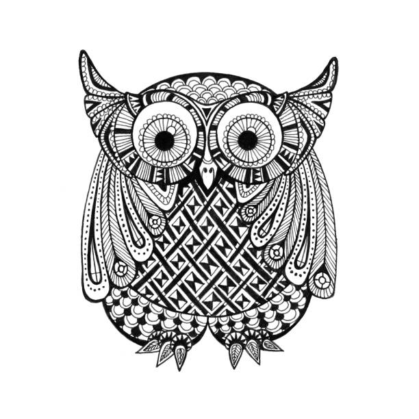 little athene owl doodle drawing - black and white owl stock illustrations, clip art, cartoons, & icons