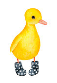 istock Little duckling character wearing black dotted welly boots. 988818958