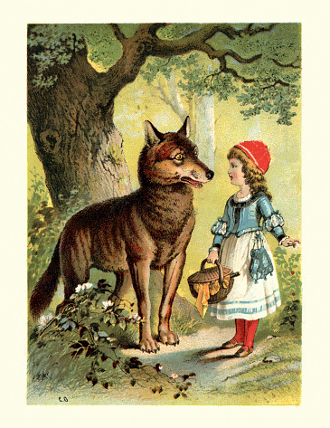Vintage colour engraving of Little Red Riding Hood and the Wolf. Little Red Riding Hood, or Little Red Ridinghood, also known as Little Red Cap or simply Red Riding Hood, is a European fairy tale about a young girl and a Big Bad Wolf. 1898