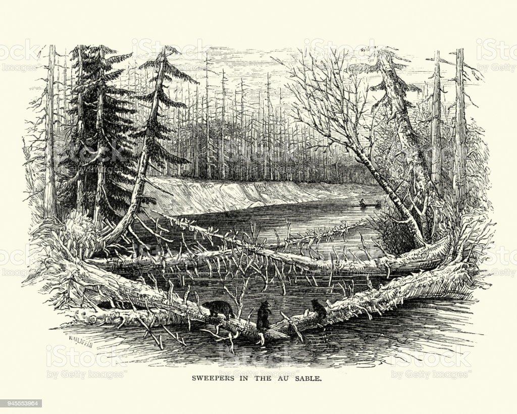 Logs blocking the Au Sable River in Michigan, 19th Century vector art illustration