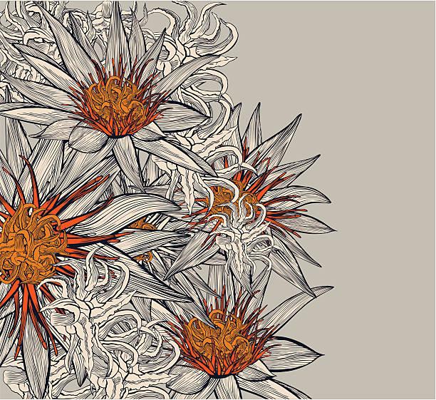 Lotus background vector art illustration